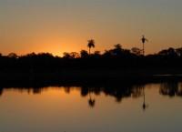 Pantanal (3)